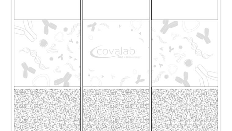 Vitrophanie dépoli imprimé pour Covalab lyon